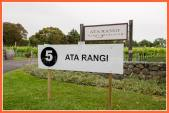 Then pop across the road to see Clive and Phyll at Ata Rangi with their team as they set up for the big day.