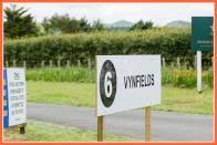 Vynfields - up for sale but still pumping their organic wines.