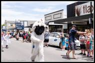 Greytown Xmas Parade - dress up