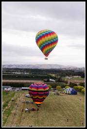 ZK-OAK takes off - this is the biggest commercial balloon in New Zealand.