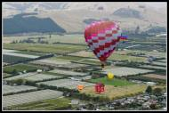 Balloons over Martinborough.