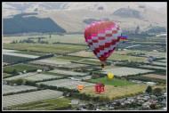 Balloons over Martinborough.